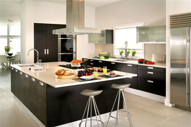 December 2008 european kitchen for European kitchen design